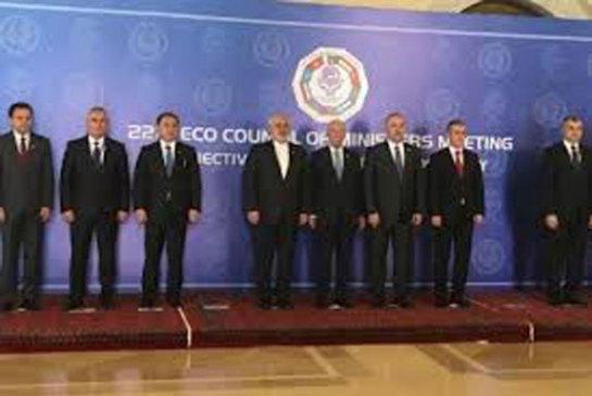 ECO Summit: Potentials and pitfalls